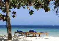 КЕНИЯ.  Отдых на курортах Момбаса и Малинди